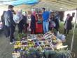 نگاهی به اولین جشنواره گل نرگس مرزن آباد